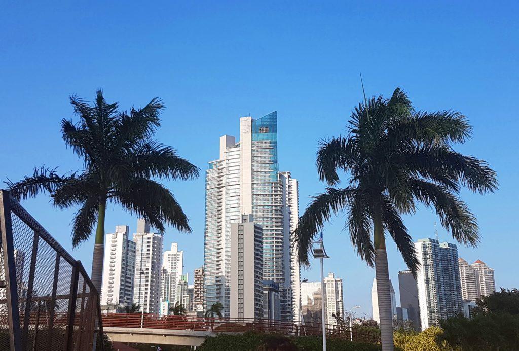 Panama City wieżowce drapacze chmur budynki palm niebo Ameryka Środkowa